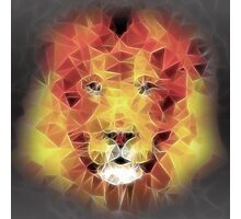 abstract lion 2 Photographic Print
