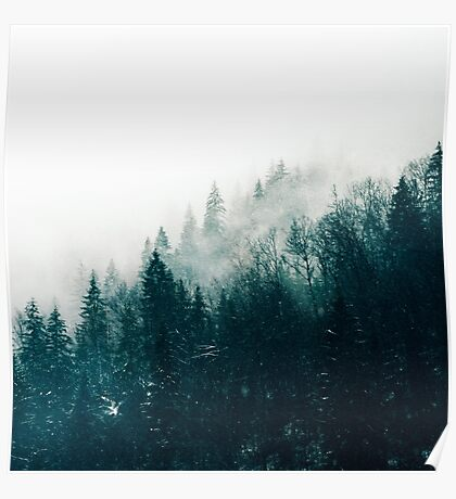 The Silent Forest #redbubble #lifestyle Poster