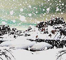 Snowfall by Anastasiya Malakhova
