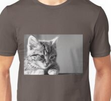 Black and White Kitten (Clothing Products) Unisex T-Shirt