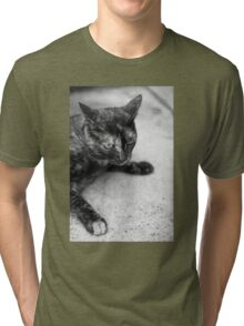 Street Cat (Clothing Products) Tri-blend T-Shirt
