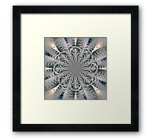 Frost Seal Framed Print