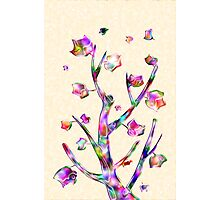 Rainbow Tree Photographic Print