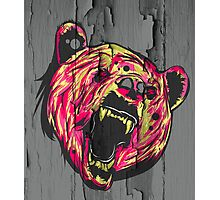 Bear (Textured or non textured) Photographic Print