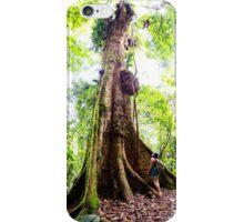 Rainy Forest Tree iPhone Case/Skin
