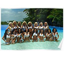 16 bikini models posing for White Tank Project - front view Poster
