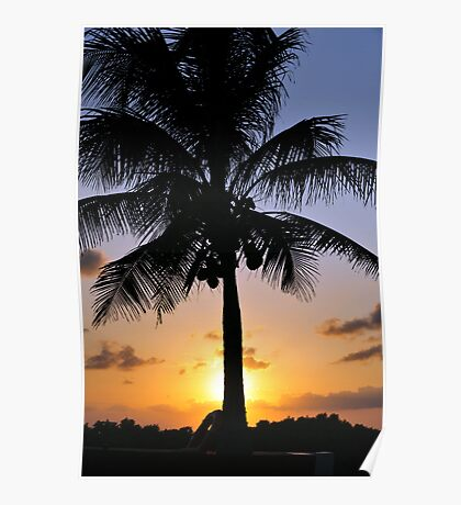 Tropical sunset with red sky, clouds and coconut tree silhouette Poster