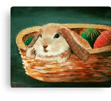 April Bunny Canvas Print