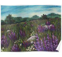 Wild Flower Field Poster