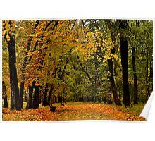 Gold autumn park Poster