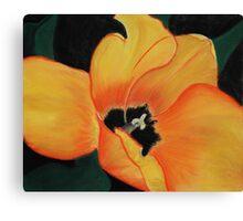 Golden Tulip Canvas Print