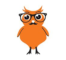 Orange Owl Hipster Nr. 01 by silvianeto