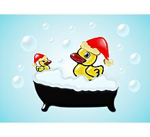 Christmas Ducks Photographic Print