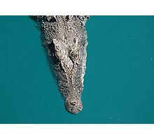 Meet Eric (2) ... he would be delighted to make your acquaintance Photographic Print