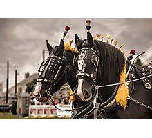 Horse show Photographic Print
