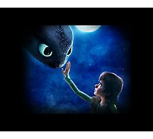 How to Train Your Dragon 11 Photographic Print
