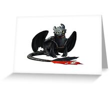 How to Train Your Dragon 12 Greeting Card