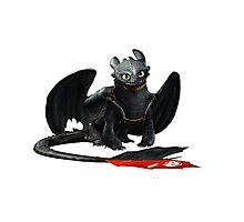 How to Train Your Dragon 12 Photographic Print
