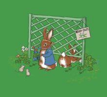 Peter's Backyard Bargains, rabbit, gardening by meredithdillman