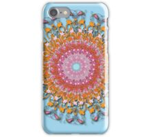 Karmic Wheel (2012) iPhone Case/Skin