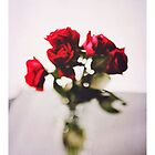 Red rose by Jessica  Lia