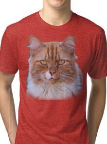 I Come to Visit Tri-blend T-Shirt