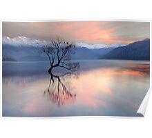 Pink Sky at Lake Wanaka Poster
