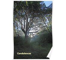 Light Through Trees  Poster