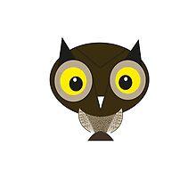 Owl by Lee  Thomas