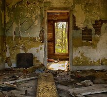 Abandoned Home - Millersburg, OH USA by Edith Reynolds