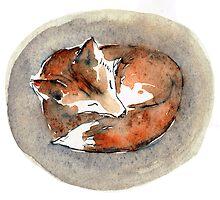 Resting Fox by becsta