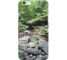 mossman gorge  iPhone Case/Skin