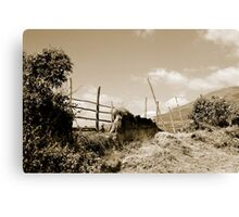Broken Fence in a Farmer's Pasture Canvas Print