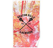 Teen Wolf Lacrosse Poster