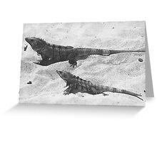 Speckled Lizards Greeting Card