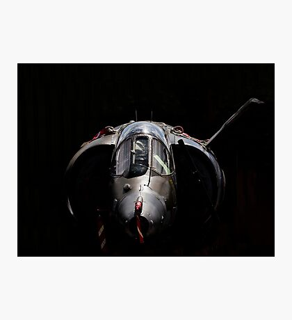 RAF Harrier GR-3 Photographic Print