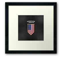 USA Pennant with high quality leather look Framed Print