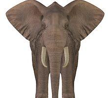 Elephant  by Mythos57