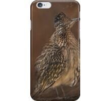 Greater Roadrunner iPhone Case/Skin