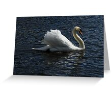 Floating By... Greeting Card