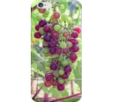 Mixed Grapes iPhone Case/Skin