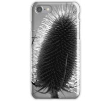 Teasel in Black and White iPhone Case/Skin