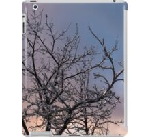Toronto Ice Storm 2013 -  Icy Branches Sunset iPad Case/Skin
