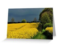 Bright fields and dark clouds Greeting Card