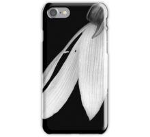 Anniversary Kiss iPhone Case/Skin