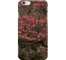 Pink Spring - Dogwood Filigree and Lace iPhone Case/Skin