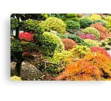 Multicolored Plants - Nature Photography Canvas Print