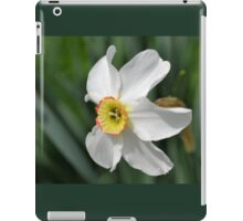 One Tiny Daffodil iPad Case/Skin