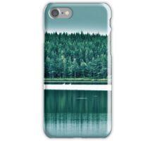 Tree Reflection iPhone Case/Skin