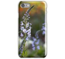 evening garden iPhone Case/Skin